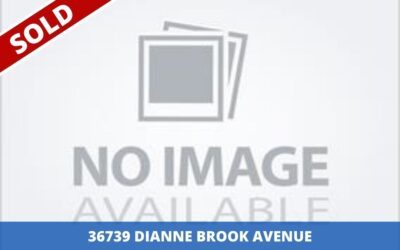 Sold: 36739 DIANNE BROOK AVENUE